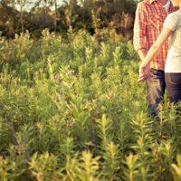 婚活において、女性と手をつなぐことの意味